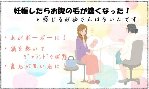 妊娠したらお腹の毛が濃くなった、と感じる妊婦さんは多い